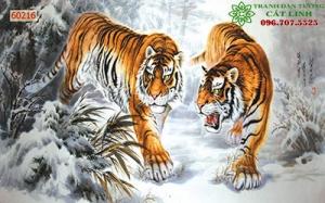 Những Điều Nên Biết Khi Mua Tranh Hổ 3D 5D, Tranh Hổ Xuống Núi, Tranh Hổ Đấu