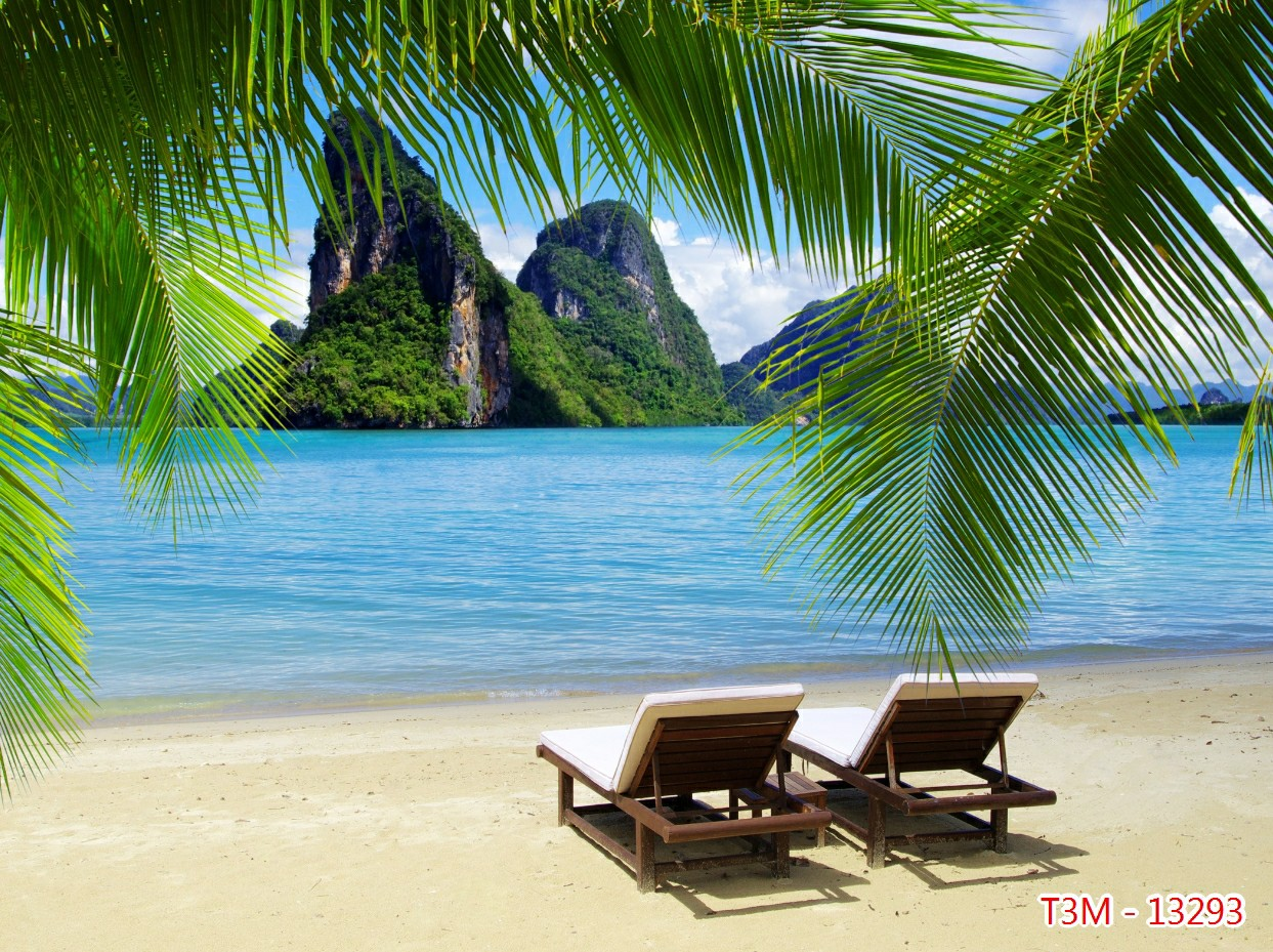 Tranh Phong Cảnh Biển - 13293