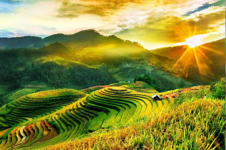 Tranh Phong Cảnh - 1004986