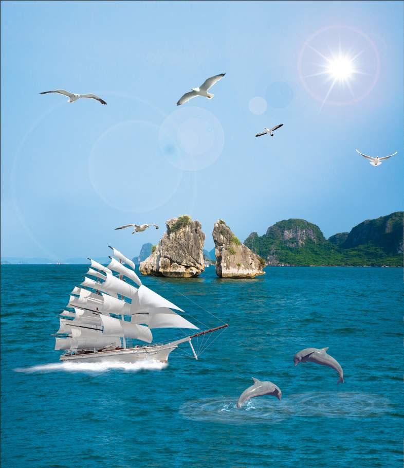 Thuận Buồm Xuôi Gió - XG9711